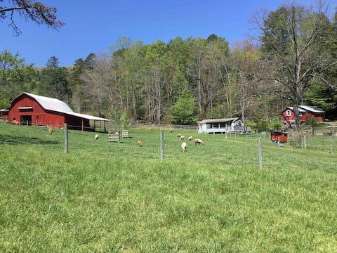 Cottage on a Farm in Pisgah Forest
