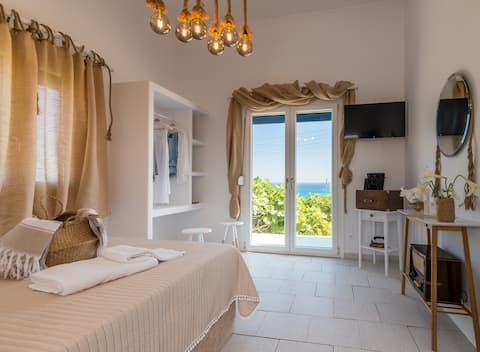 Mandrakia Totally Sea View Villa with pool
