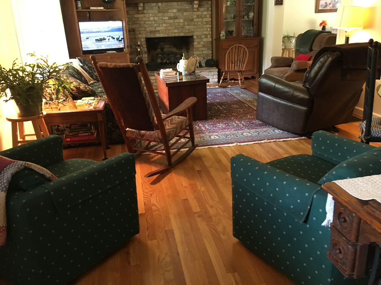Living area with fireplace and tv
