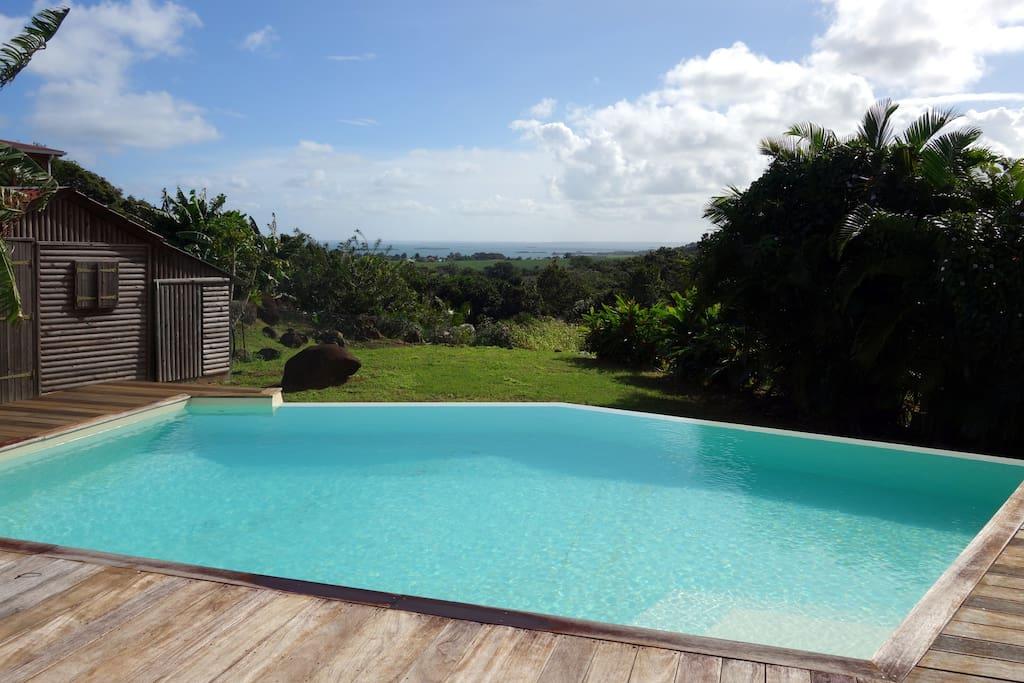Piscine et vue sur la mer des Caraïbes depuis la terrasse