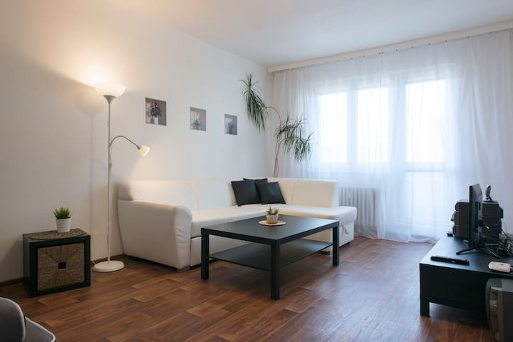 Newly reconstructed flat near the city centre