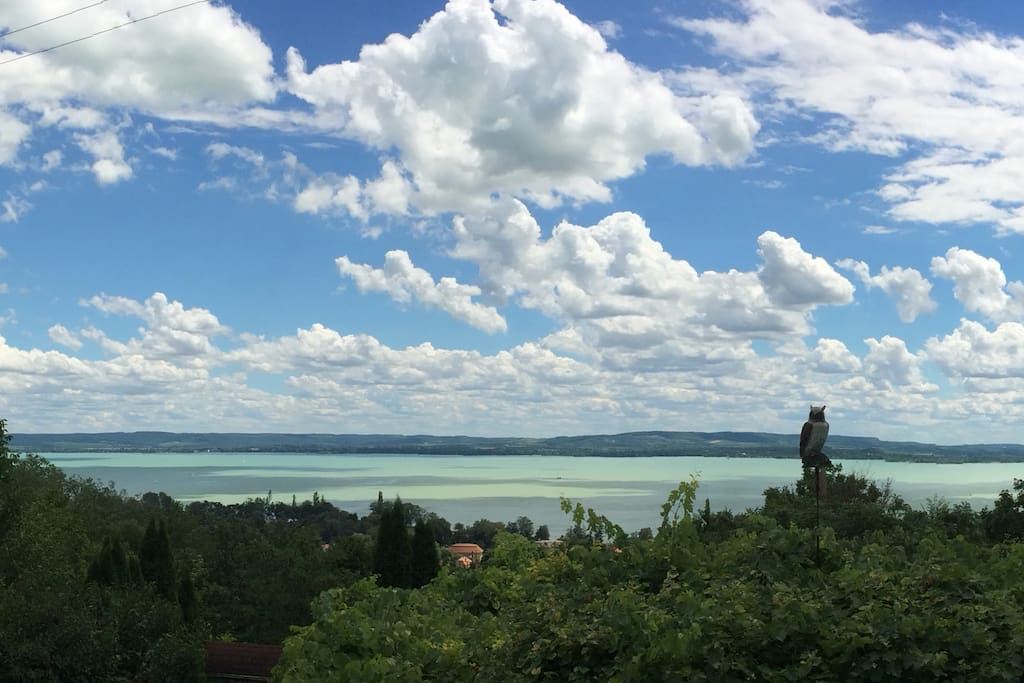 Kilátás a teraszról / View from the teracce