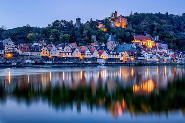 W3 Neckarblick, Natur, Altstadt vor Heidelberg