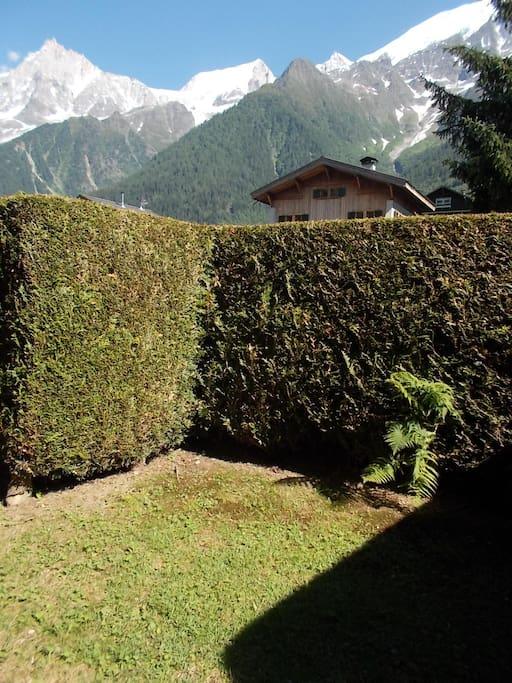 jardin et vue massif Mont-Blanc