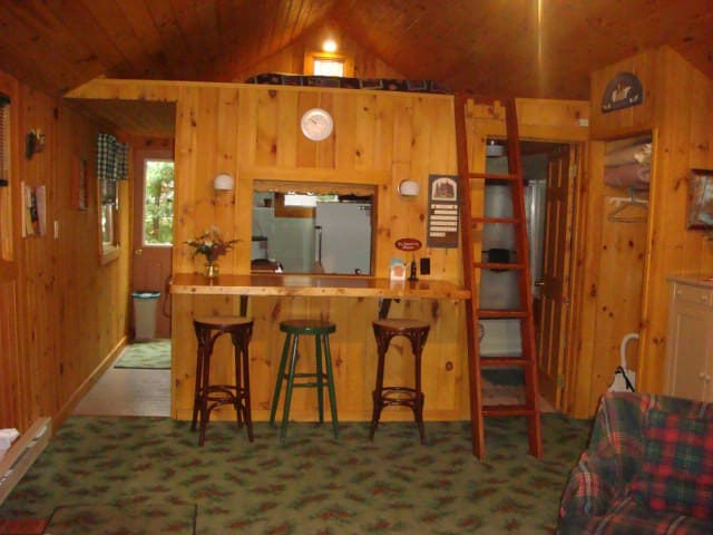 Adirondack Cabin at Cobble - Lake Placid - Kulübe