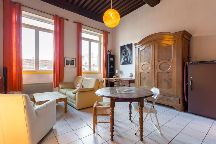 Wonderfull flat in Lyon,Croix Rousse  !