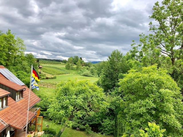 Ferienwohnung/App. für 3 Gäste mit 40m² in Lindau (Bodensee) (116835)