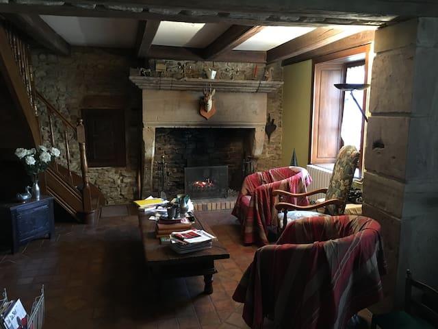 1er salon avec cheminée
