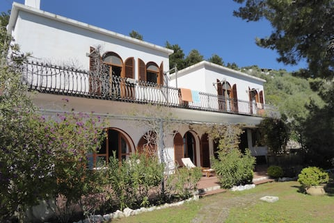 Quiet, panoramic country house  with sea views