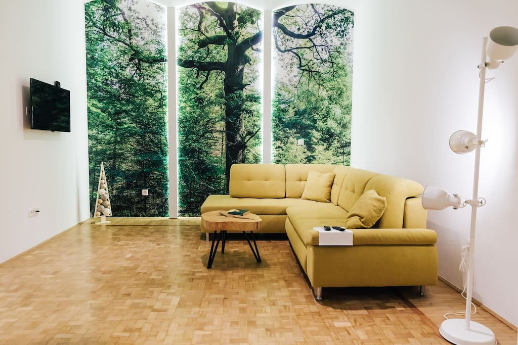 Photo of the oak tree and couch