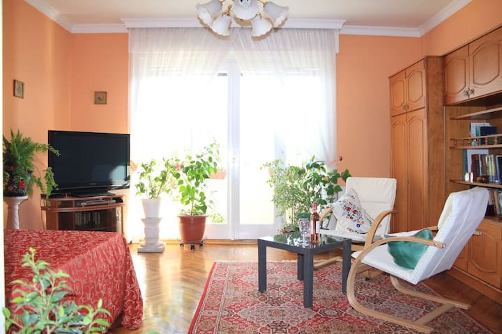 Large sunny flat, close to everything - Budapest - Appartement