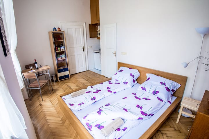 Studio with private shower&kitchenette in Prague1