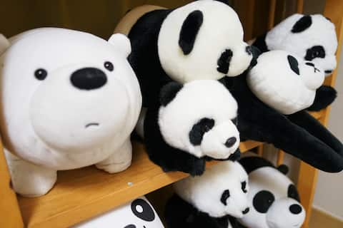 이 방의 원래 주인은 '팬더'를 정말정말 좋아해서, 팬더 인형을 사모으고 있어요. The host of the room likes pandas a lot. She collects panda dolls!