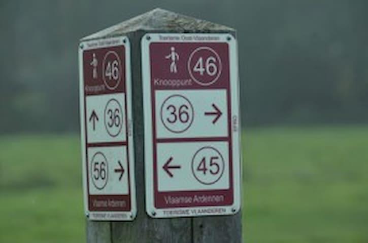 Plenty of hiking paths around