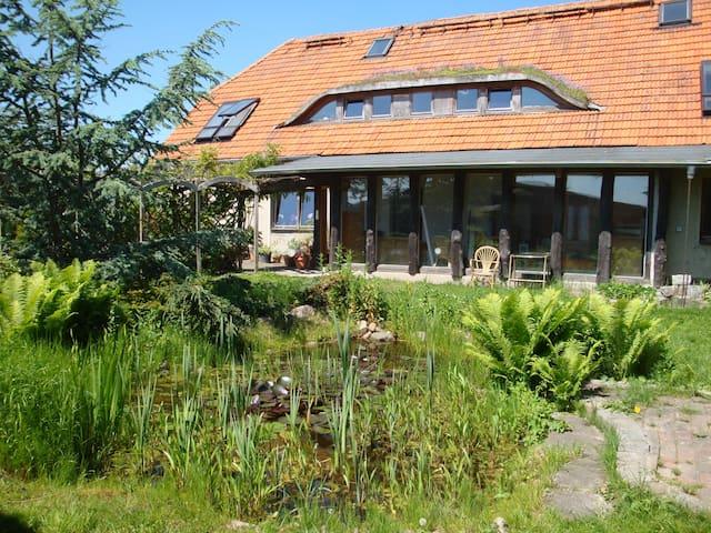 Wohnung mit Charme am Tor zum Fischland - Ribnitz-Damgarten - Apartament
