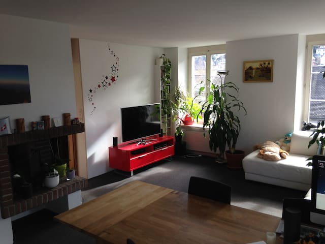 Cosy flat in Baden, very close to Zürich