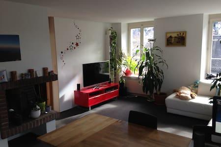 Schmucke Wohnung im Bäderquartier - Baden - Daire