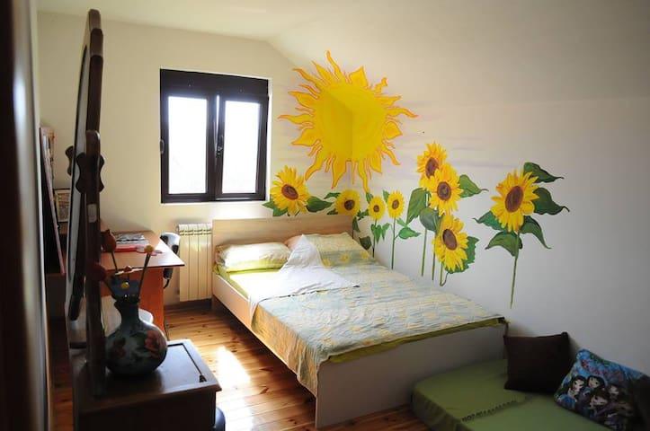 Sunflower bedroom + free bikes - Cetinje - Casa