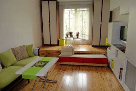 320 sq. ft. studio Buttes Chaumont