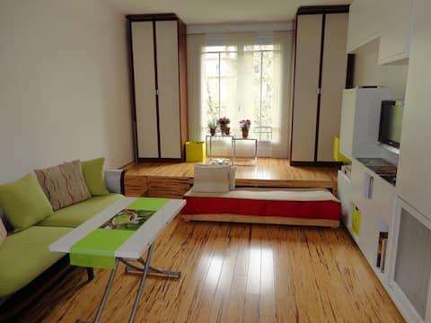 320 sq. ft. studio Buttes Chaumont
