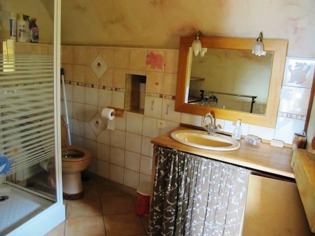 salle de bain avec douche - WC - lavabos, lave linge