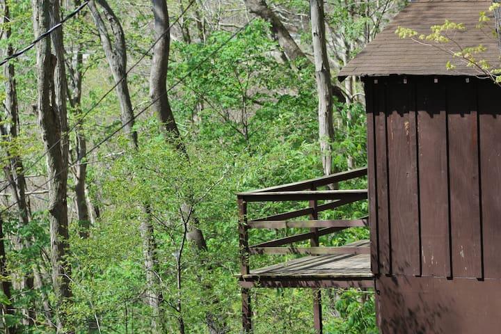 Free Spirit Adventure Cabin 3 - Caldwell - Houten huisje