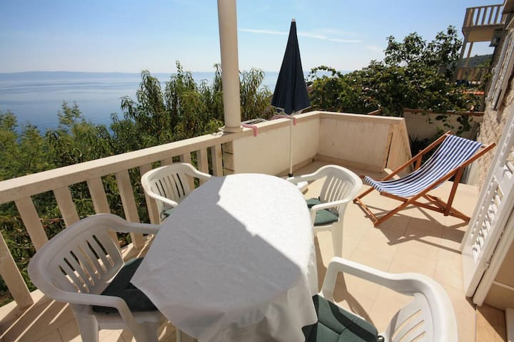 Two bedroom apartment with terrace and sea view Puntinak, Brač (A-718-d)