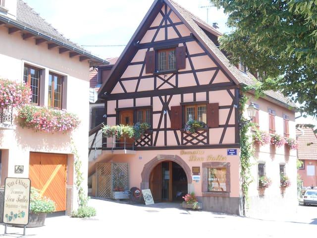 Route des vins d'Alsace Itterswiller Gîte ****