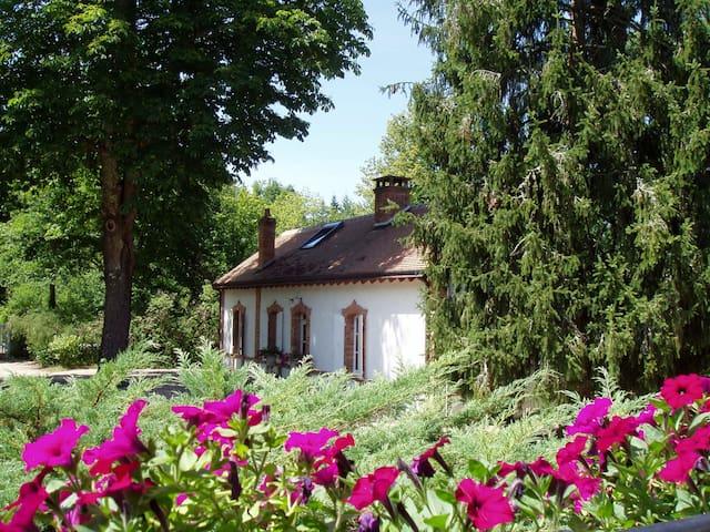 Dépendance with Pool - Salbris - House