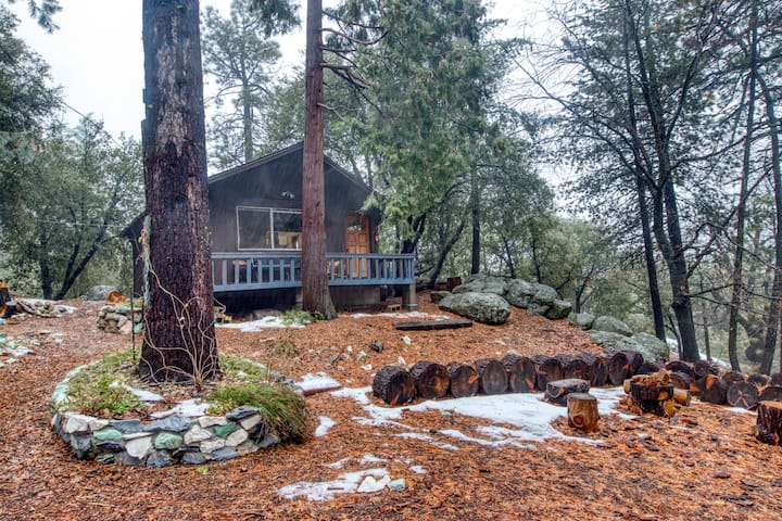 Newly renovated cabin on 2.5 acres with deck and forest views!
