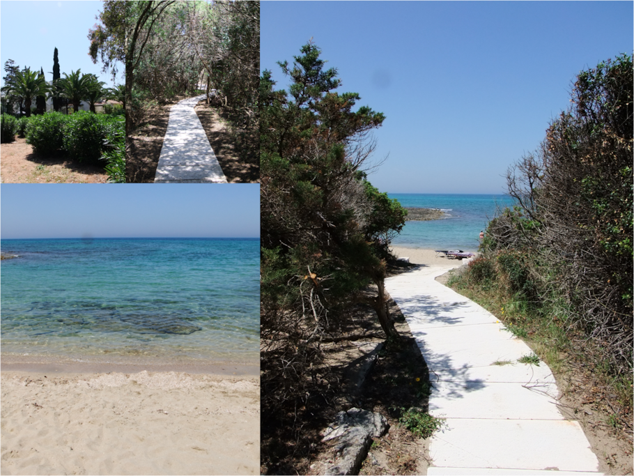 Pathway to the beach - through the pine forest and typical mediterranean vegetation