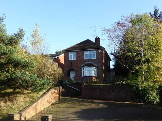 Detached House for Farnborough Show - Wrecclesham