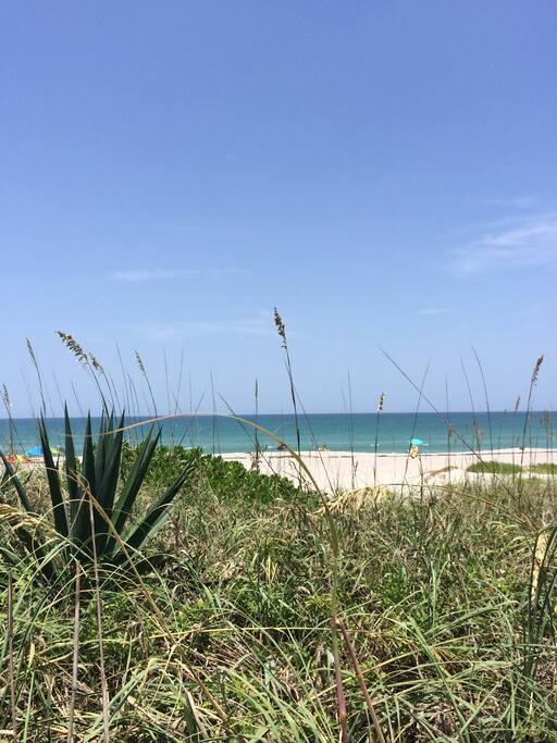 Half mile walk to the beach!