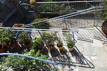 tarrace/garden