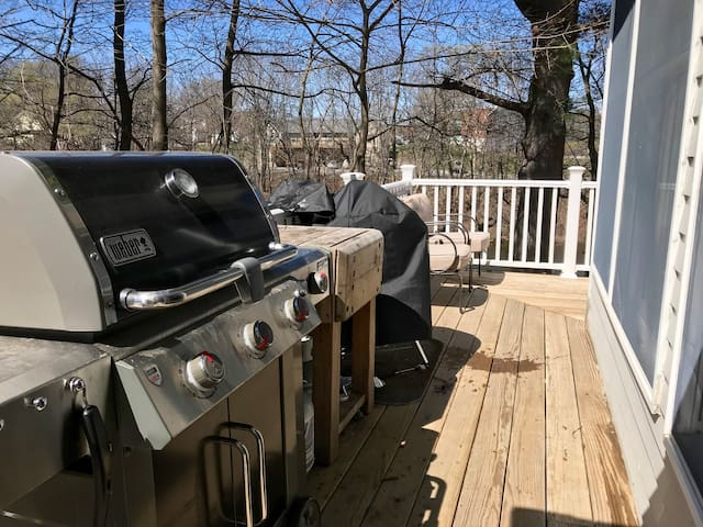 Deck with a variety of cook spaces