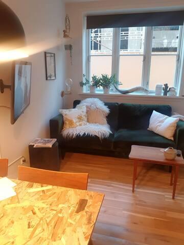 Central lejlighed i Aalborg midtby