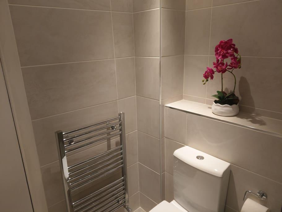 Heated towel rail & toilet