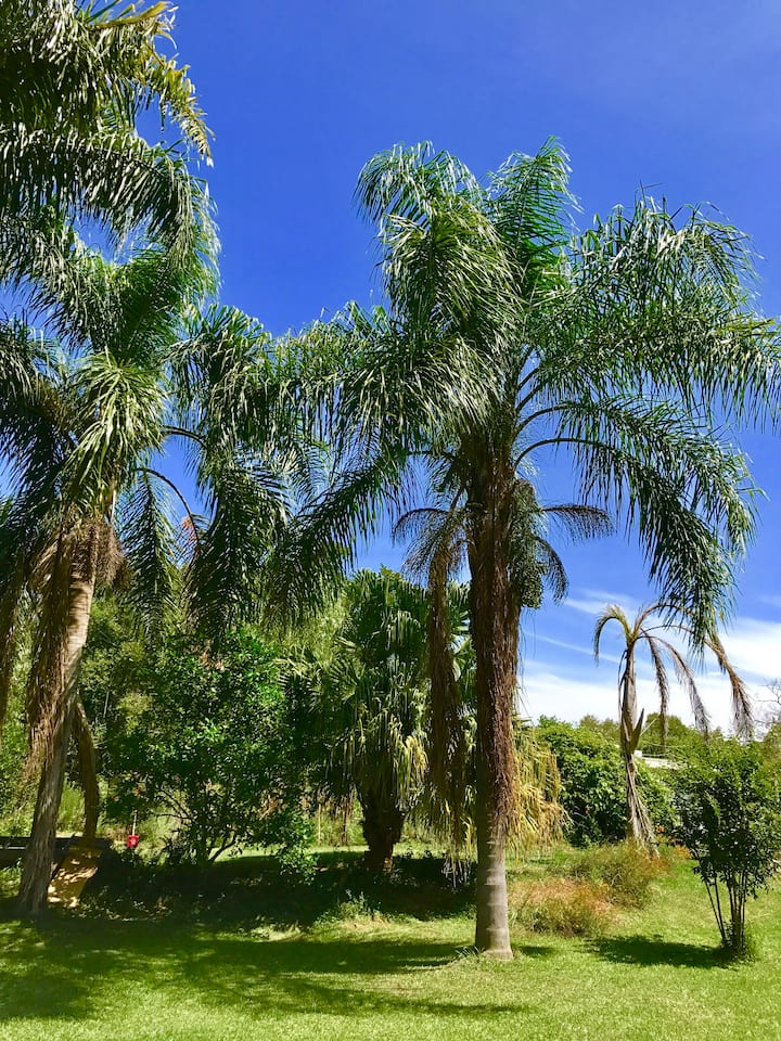 Touch Nature Delta del Tigre Relax on the Island.