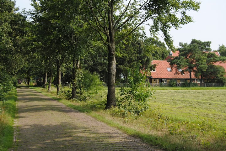 Heerlijke vakantieboerderij in Drents Friese Woud