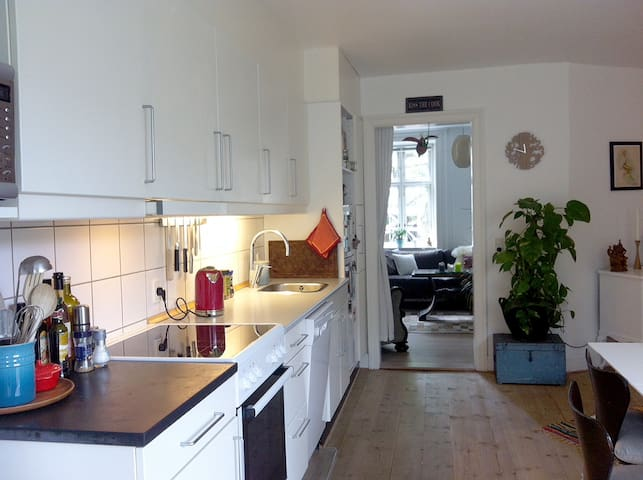 Cozy and quiet City Apartment Copenhagen V