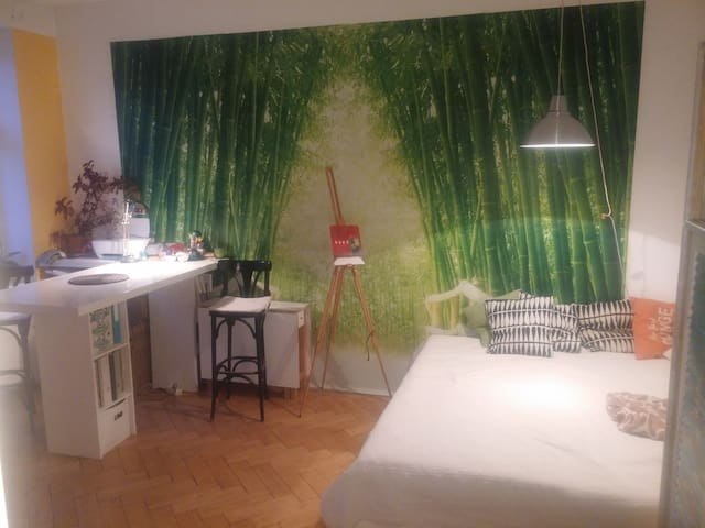 Your 25m2 big room