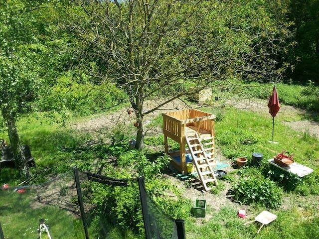 Bunte Wohnung mit Kater im Grünen