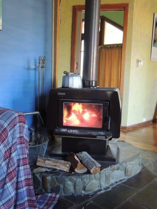 Toasty wood heater