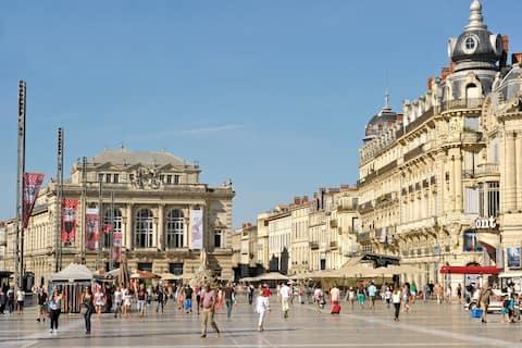 Estudio en pleno corazón de Montpellier