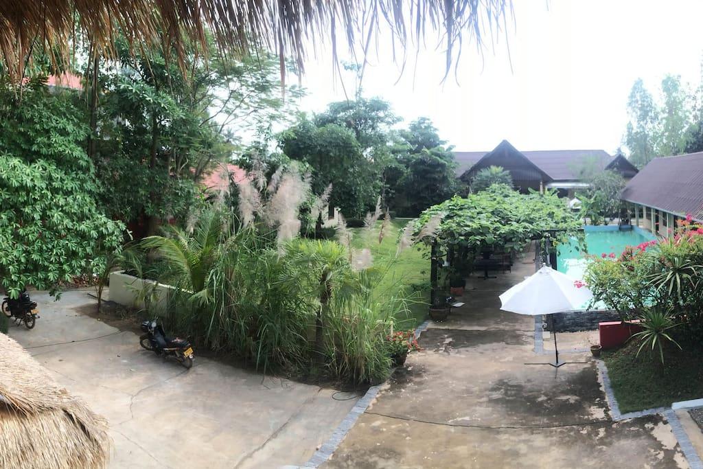 vue panoramique de la fenêtre du bungalow