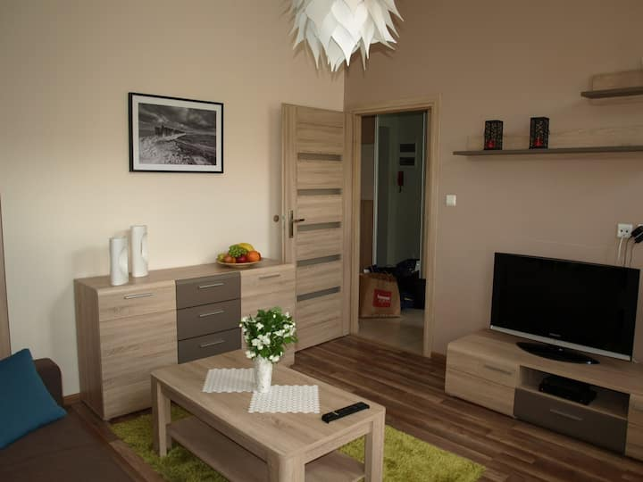 Heart of Szczecin - lovely apartment for 5 people