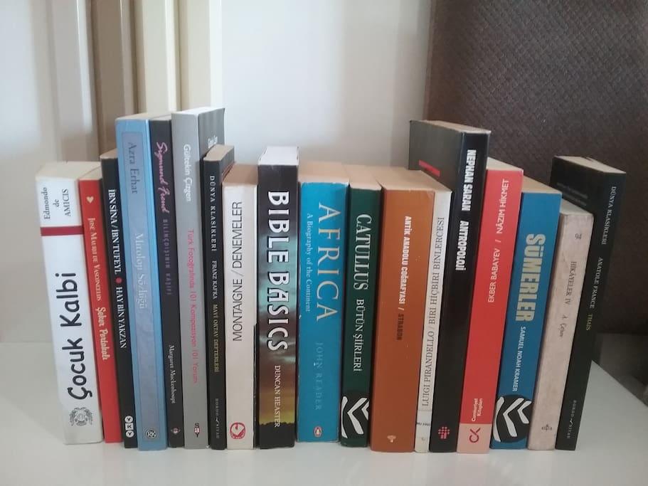 Books in English, Latin and Turkish