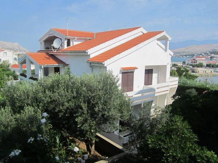 Apartments Valentić / Studio A1