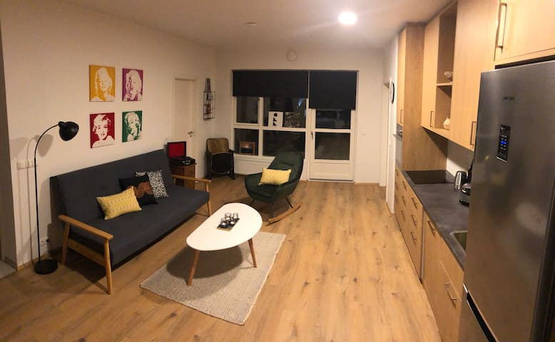 New Apartment in Geo-Thermal Heaven South Iceland