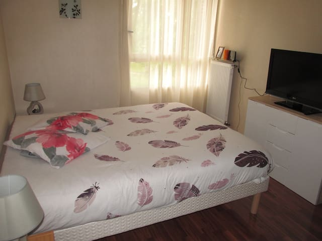 Joli T2 Euro 2016 - Pretty flat for Euro 2016 - Ermont - Appartement